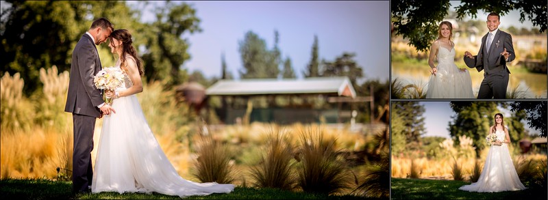 Fresno, private residence wedding