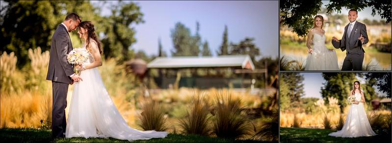 Fresno, private residence wedding