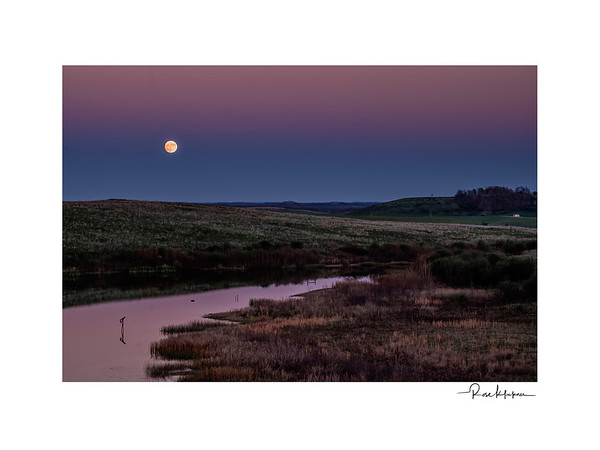 Moon Over the Wilds