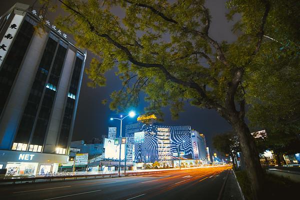 在城市當中,要與自然環境保持一個平衡,是非常不容易的事,樹要非常堅強!