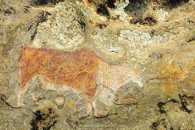 San or Bushman rock art near Clarens. Free State. South Africa