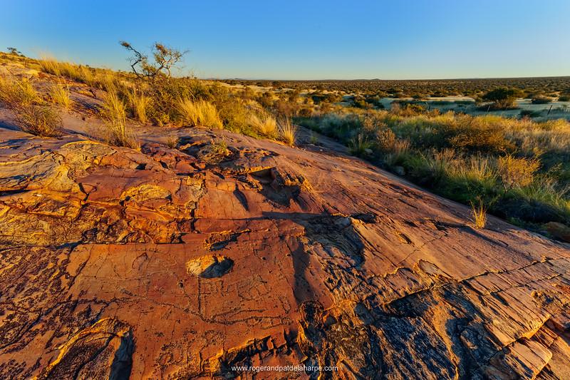 San or Bushman Petroglyph (rock engraving). Northern Cape. South Africa.