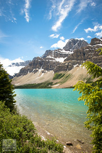 Bow Lake Portrait