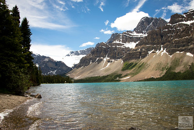 Bow Lake Shore