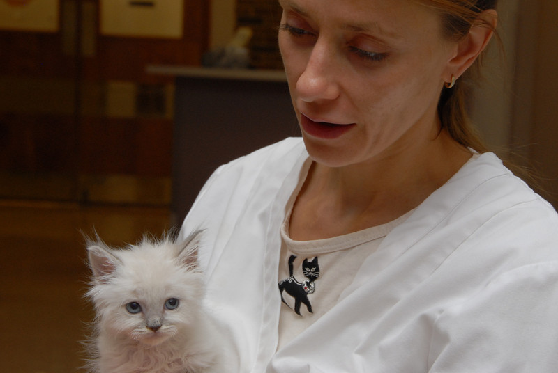 Hotch being held by Dr. Jennifer Woll, the breeder we got him from.