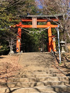 Shrine Torii Closer