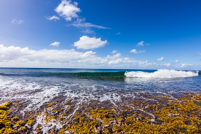 Who would've thought we'd get the chance to surf in the Cook Islands!?