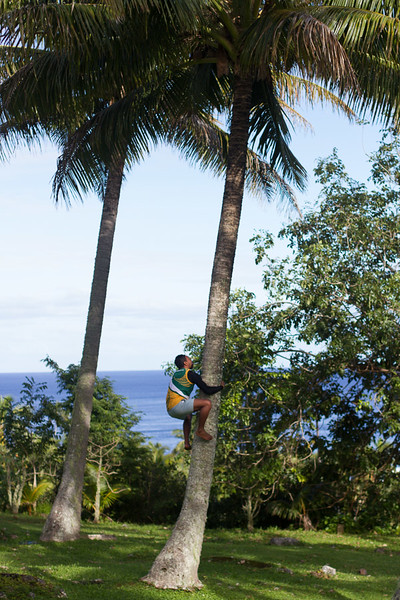 Stick around long enough here and you'll find yourself climbing a coconut tree.
