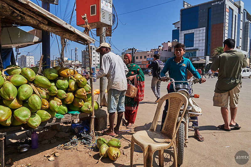 Coconut Stand - Bangalore, India