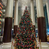 Christmas Tree,  JW Marriott - Bangalore, India
