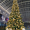 Christmas Tree, Shoppes at Marina Bay Sands - Singapore
