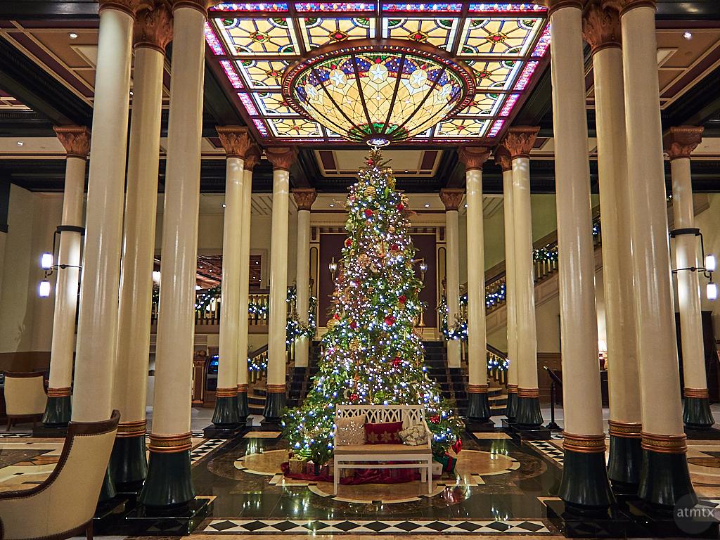 Driskill Christmas Tree 2019 (Camera 4)