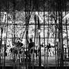 Bamboo Texture, Hawker Center - Singapore