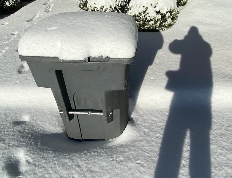 Snow Covered Garbage Can - Austin, Texas