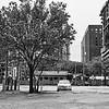 Lone Camry, Rainey Street - Austin, Texas