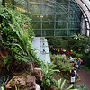 Butterfly Garden, Changi Airport - Singapore