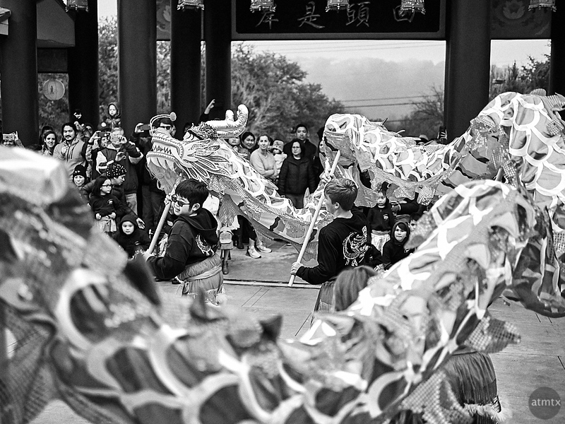 Dancing with the Dragon, Chinese New Year 2019 - Austin, Texas
