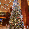 Christmas Tree, Grand Hyatt - Singapore