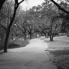 Hike and Bike Trail - Austin, Texas (Medium Framing)