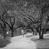 Hike and Bike Trail - Austin, Texas (Tight Framing)