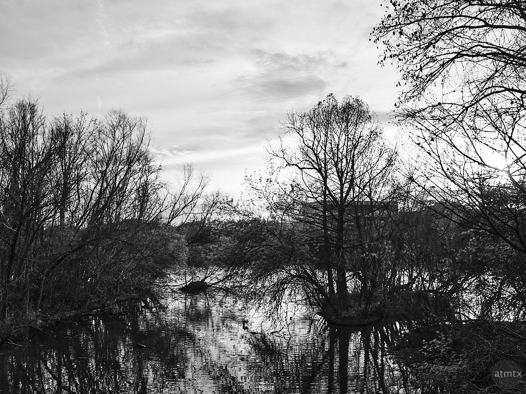 Untamed Lake - Austin, Texas