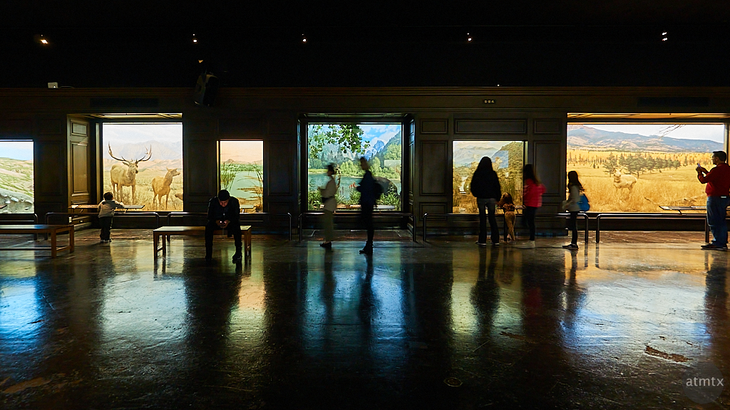 Windows on Nature, Natural History Museum - Los Angeles, California