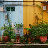 Alleyway Color - Singapore