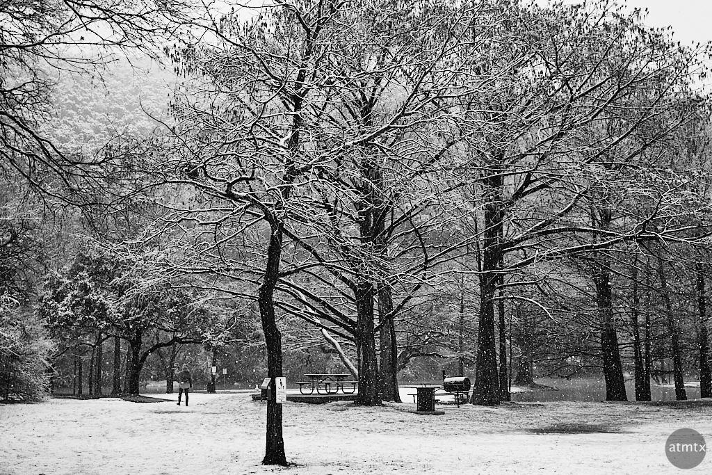 Snow Covered Park - Austin, Texas