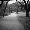 Hike and Bike Trail - Austin, Texas (Original Framing)
