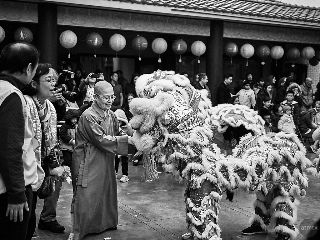 The Monk and the Lion, 2019 Chinese New Year - Austin, Texas