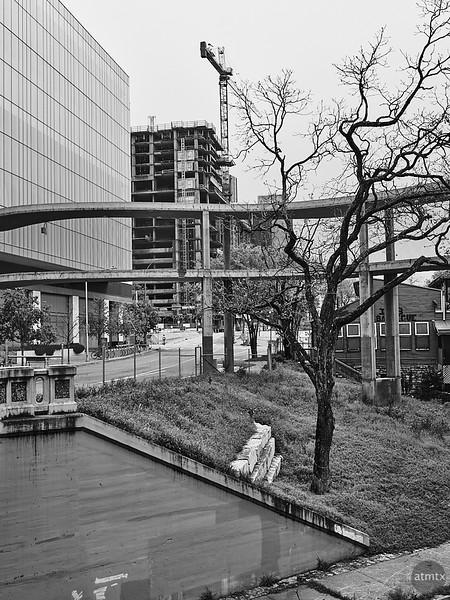 Tree and Construction - Austin, Texas