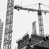 Cranes of Downtown - Austin, Texas