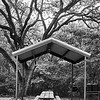 Picnic Pavilion - Austin, Texas