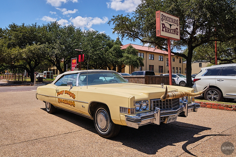 Horned Cadillac, Stockyards - Fort Worth, Texas