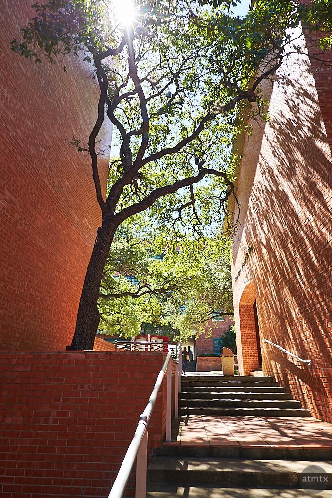 Light Rays, Trinity University - San Antonio, Texas