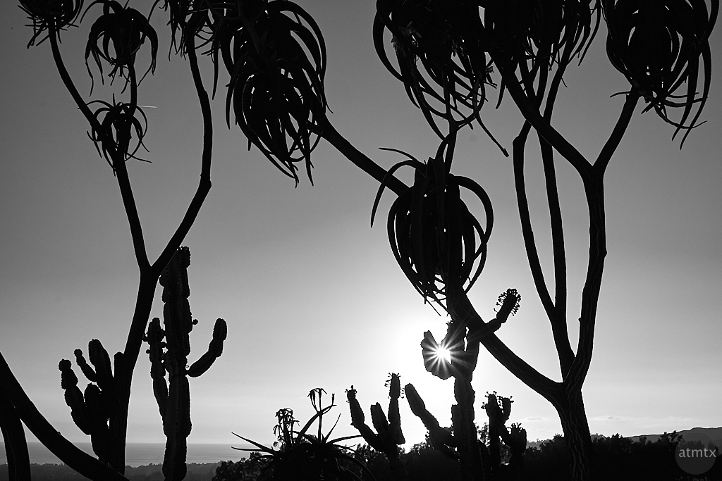 Silhouette Sunset, Getty Center - Los Angeles, California