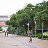 Cyclist on Path, University of Texas - Austin, Texas