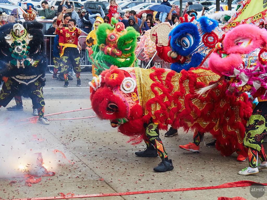 2018 Chinese New Year Celebration - Austin, Texas