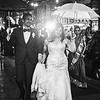 Wedding Parade - New Orleans, Louisiana
