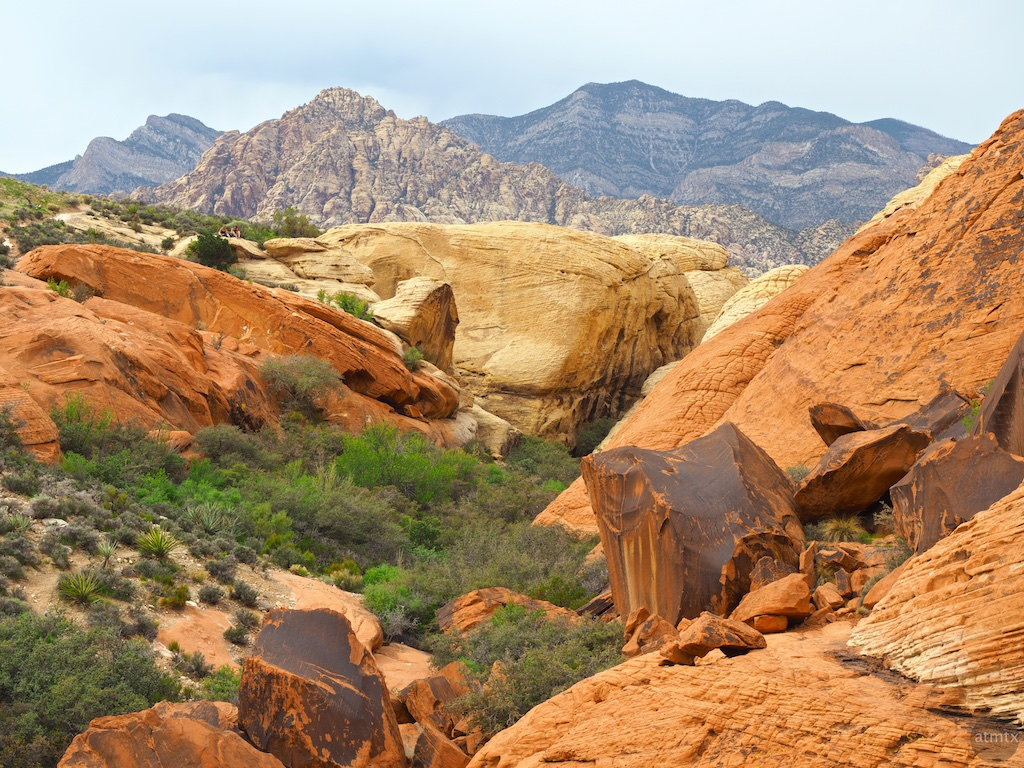 A Contrast in Rock Colors, Red Rock Canyon - Near Las Vegas, Nevada