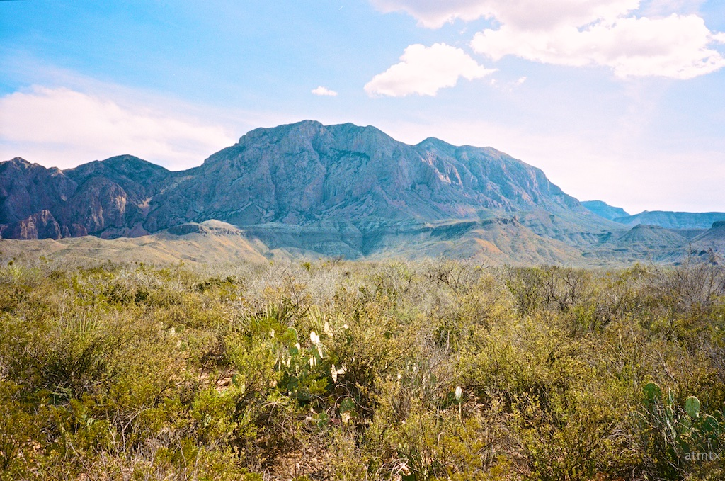 Chisos Mountains from Sam Nail Ranch - Big Bend National Park, Texas