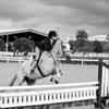 Scene #7,  Great Southwest Equestrian Center - Katy, Texas