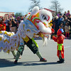 The Lion and Little Buddha, 2014 Chinese New Year Celebration - Austin, Texas