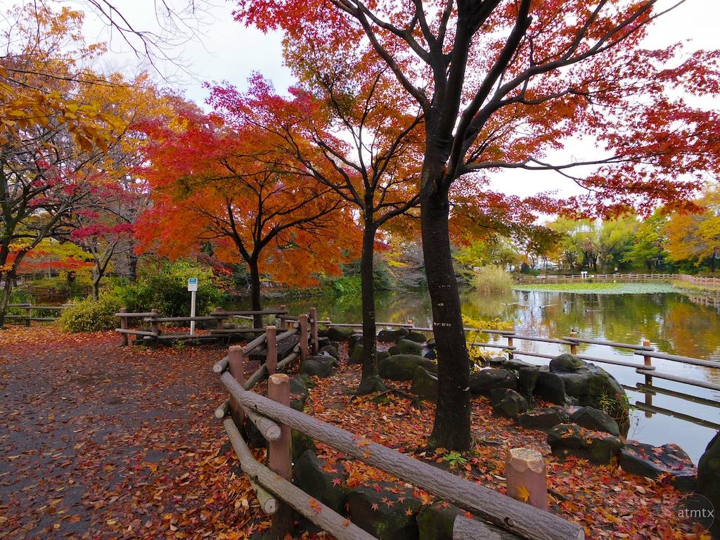 A Neighborhood Park - Yokohama, Japan