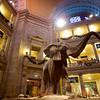 Elephant Centerpiece, Smithsonian Natural History Museum - Washington DC