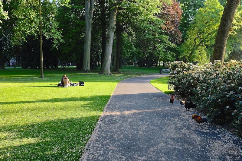 Picnic in Park Valkenberg - Breda, Netherlands