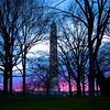 Washington Monument at Sunset - Washington DC