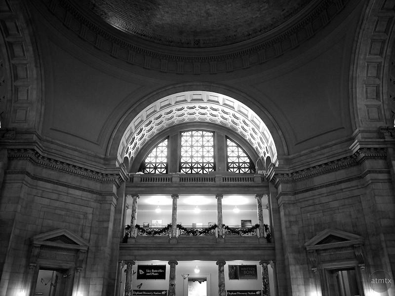 Rotunda, Smithsonian Natural History Museum - Washington DC