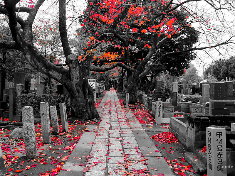 Cemetery with Red - Tokyo, Japan