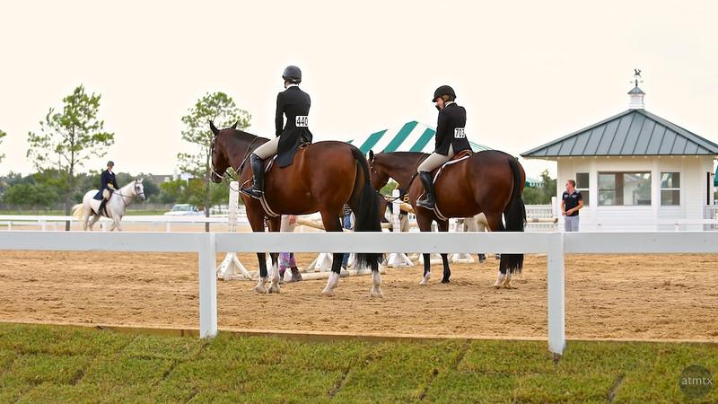 Scene #25,  Great Southwest Equestrian Center - Katy, Texas